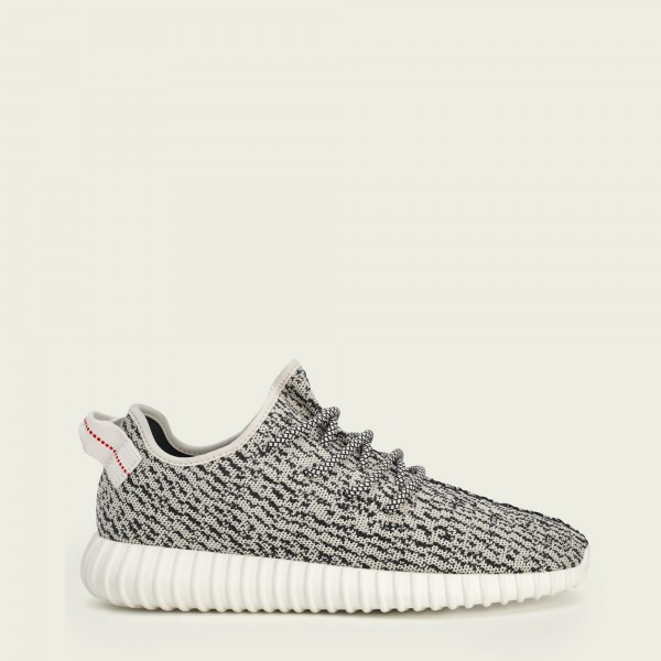 Adidas Yeezy Boost 350 by Kanye West AQ4832 Turtle...